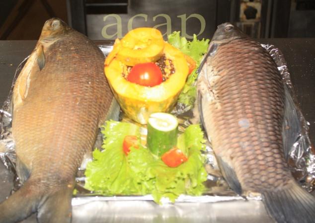 Clôture de l'atelier de renforcement des capacités des pêcheurs et vendeuses de poisson de Mbaïki