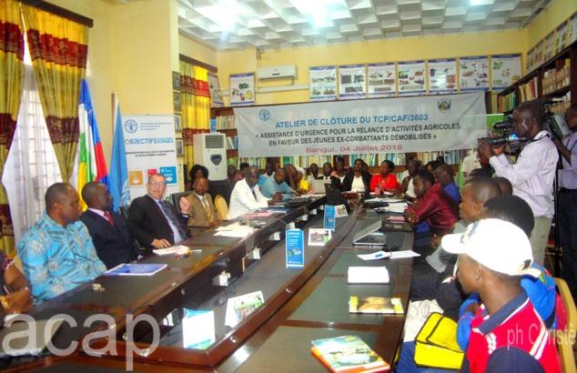 Vers la professionnalisation des 3000 ex-combattants démobilisés de Bangui, Bouar et Bambari
