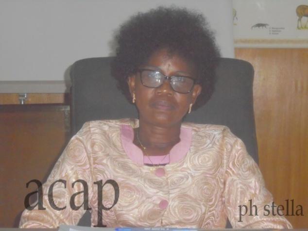 Fin à Bangui du séminaire de formation des points focaux du Plan de relèvement sur la formulation de projets
