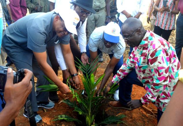 Scène de planting collectif d'un jeune palmier regroupant M. Fortunato Ofa Mbo Nchama et la délégation gouvernementale