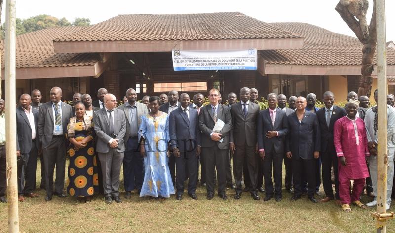 Ouverture à Bangui d'un atelier national de validation du document de la politique forestière de la République centrafricaine