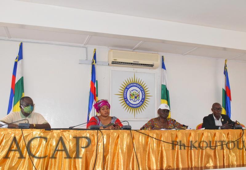 La deuxième session ordinaire du Conseil  Economique et Social de la RCA s'ouvre le 03 Août
