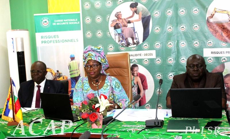 L'Organisation Internationale du Travail évalue les activités menées en République Centrafricaine