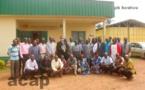 Ouverture à Bangui d'un atelier de formation sur la gestion de la chenille légionnaire d'automne du maïs