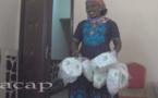 La fédération centrafricaine de football remet des ballons aux responsables des clubs de football féminin