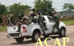 Le bataillon amphibie des forces armées centrafricaines en plein exercice tactique à Béréngo