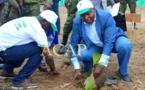 Le président Faustin-Archange Touadéra appelle à planter 3 millions d'arbres en 2020