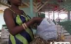 La vente d'arachides: un commerce qui rapporte