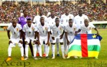 Les Fauves de Bas-Oubangui de football