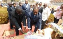 dépôt de gerbe par le PM Firmin Ngrébada